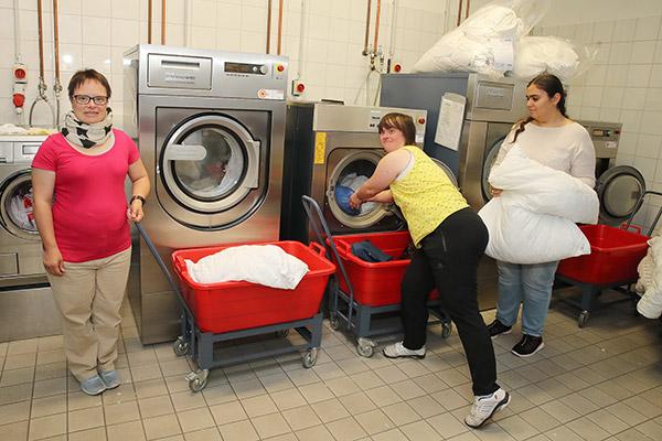 Wäscherei- und Heißmangel - BWO
